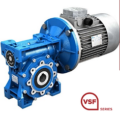 Worm gear reducers VSF series
