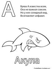а.jpg
