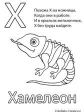 bukva-h-hameleon.jpg