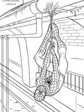 SpiderMan-na-pautinke.jpg