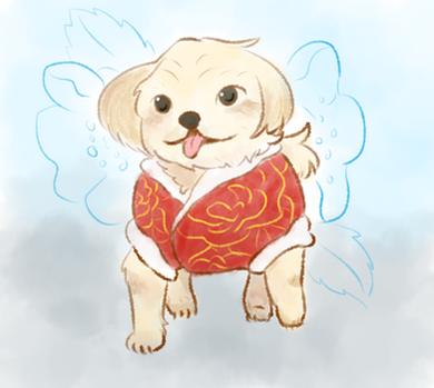 CNY Dog
