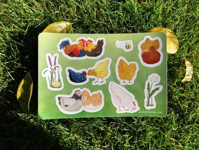 Gay Chickens Sticker Sheet