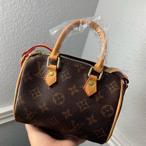 Inspired MINI LV