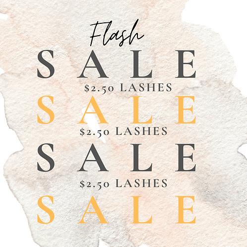 $2.50 MYSTERY FLASH SALE