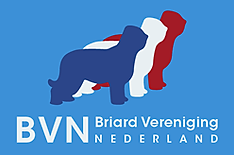 Logo BVN - Nieuw in 2017.png