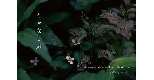 20_8.jpg