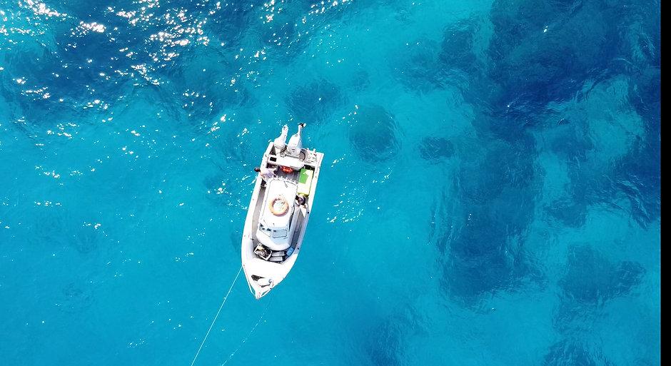 reef01.jpg