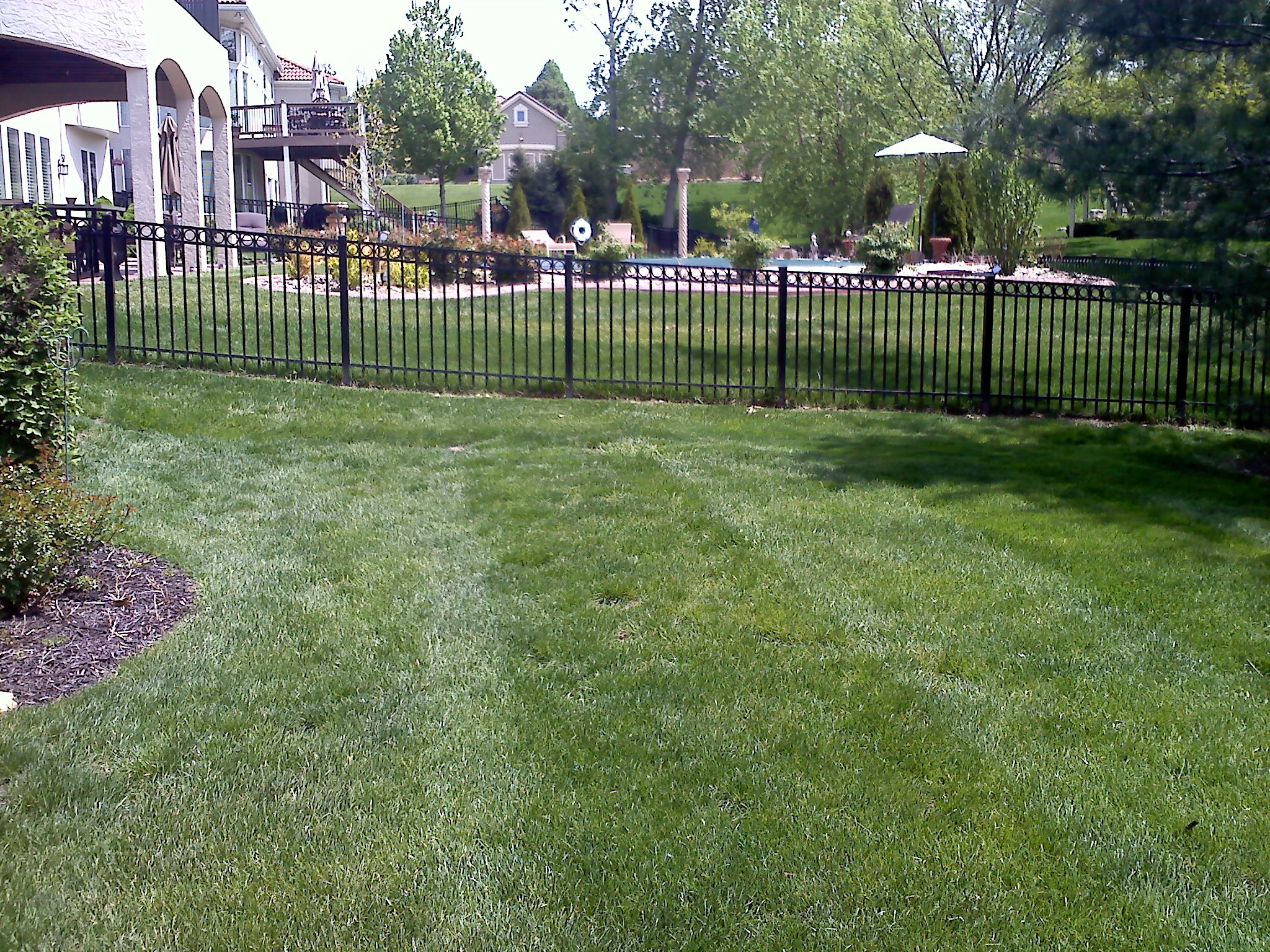 #9 East side yard before picture