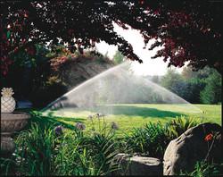Sprinkler System - Install / Repair