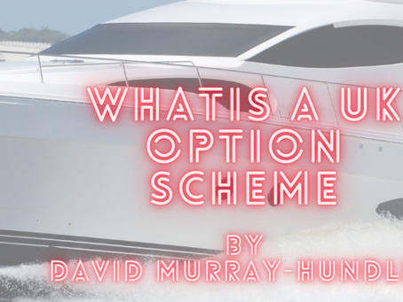 What is a stock option scheme for a UK startup?