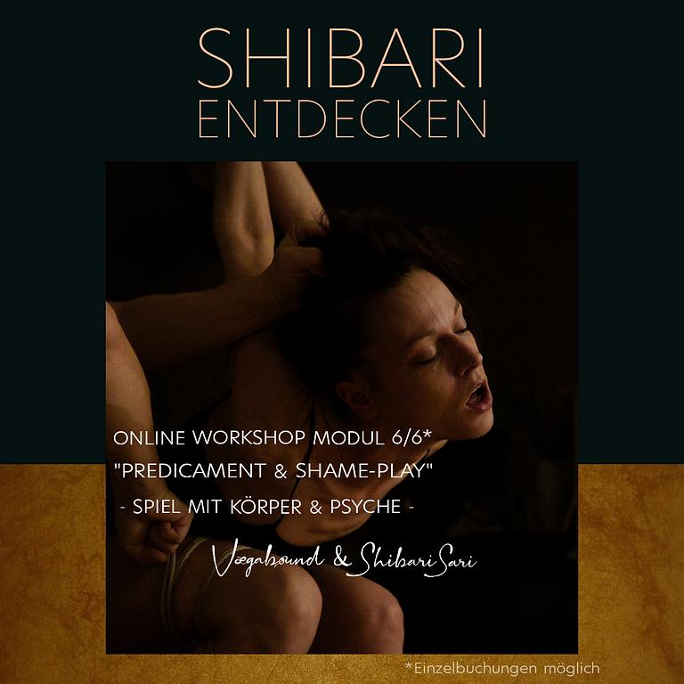 """(DE) Shibari entdecken 6/6 - """"Predicament und Shame-Play"""""""