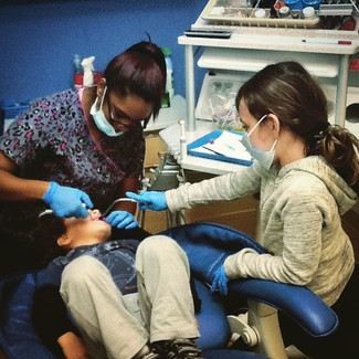 Future dentists of Safari!