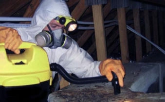 attic-cleanning-service-greet-rat-contro