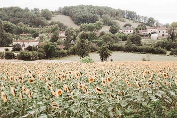 MBR_France Image-0341.jpg