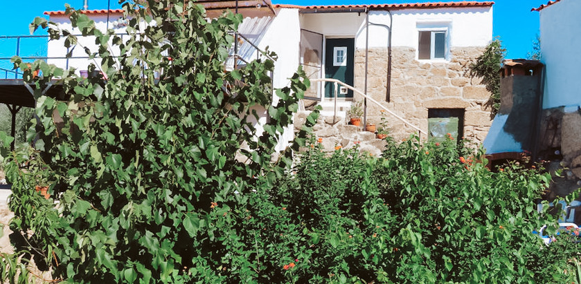 3 Acre Organic Farm + Guest House in Portugal for $149k
