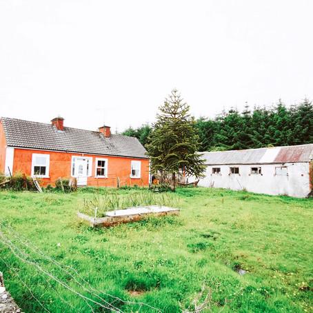 Horse Property with Acreage in Ireland