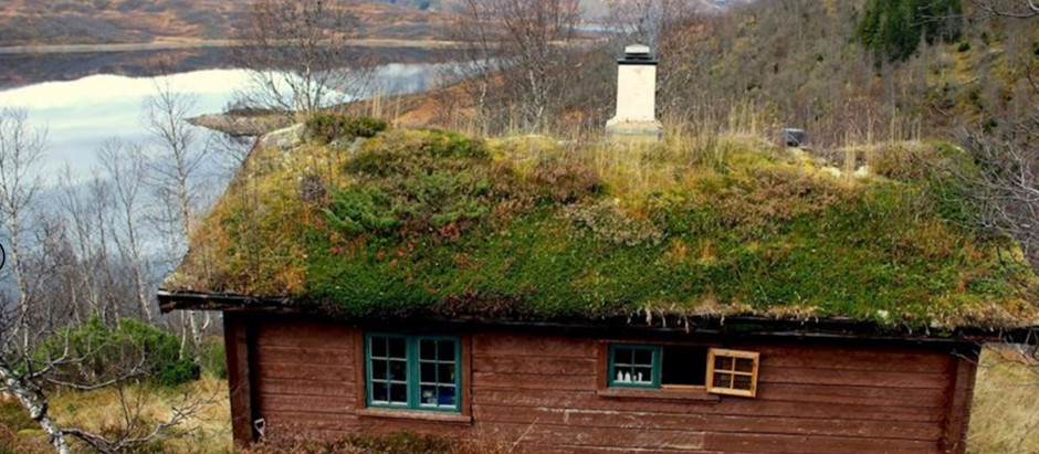 Remote Earth Hut in Norway for $119k