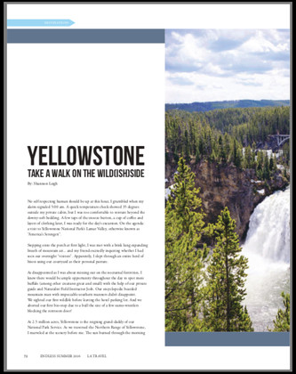 Yellowstone Article Cover_LATM.jpg