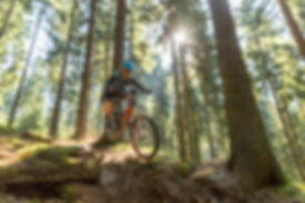 eMTB-Mode Uphill Flow 6.jpg