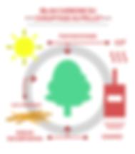 BILAN CARBONNE DU CHAUFFAGE A PELLET. Si, pour un combustible, les procédés de fabrication et de transport sont pris en compte, l'impact du pellet, par rapport aux énergies fossiles et fissiles, est très réduit. Utiliser le pellet comme combustible pour nos besoins de chauffage réduit la consommation d'énergies fossiles dont les méfaits sur l'environnement sont reconnus