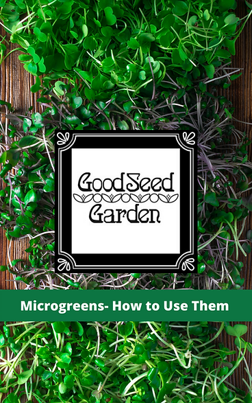 Microgreens- How to Use Them.png