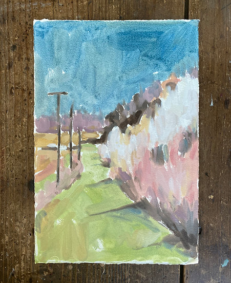 Spring Path on Paper