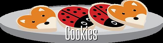 WebsiteCookies.png