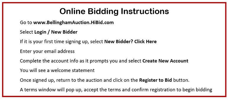 Online Bidding Instructions.JPG