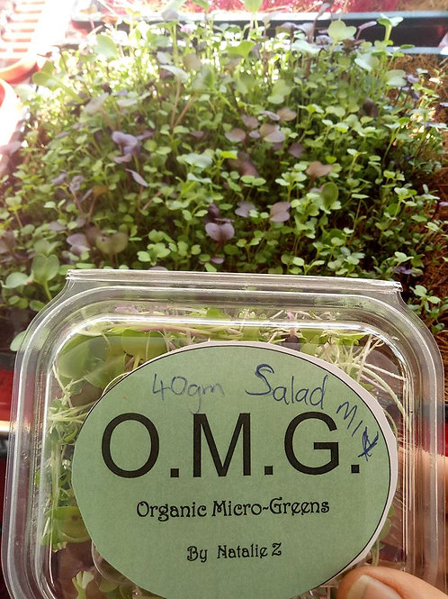 Salad Mix 100gms