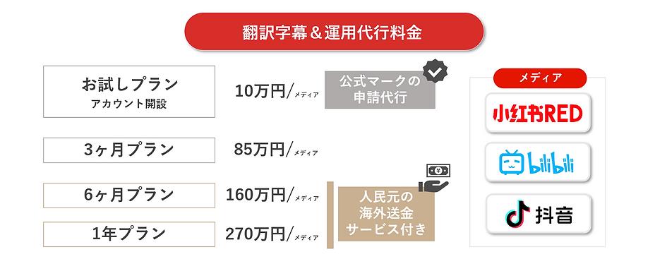 料金 中国SNS運用.PNG