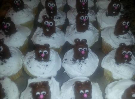 Got Groundhogs?