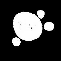 LOGO-IPE - Branca.webp