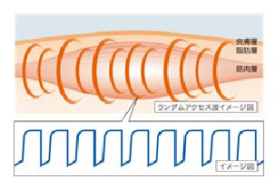 ランダムアクセス波イメージ図.png