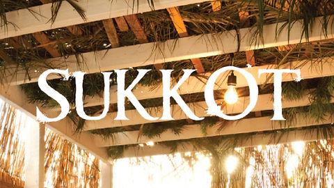 Sukkah-4-Bulb.jpg