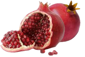 Pomegranate-Split-2-WixTransparent_edite