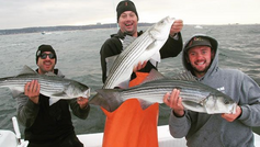 Episode 2 - The Fall Run of Striped Bass