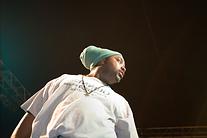 Monterey Bay Reggaefest 2007 pics 026.jp