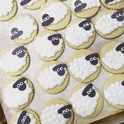 Sheepish Cut Sugar Cookies