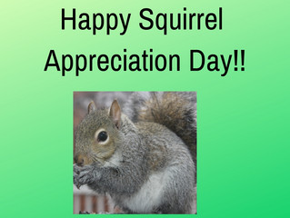 Squirrel Appreciation Day? Ha, Ha