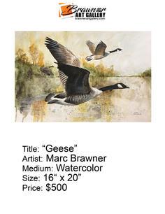 Geese-email.jpg
