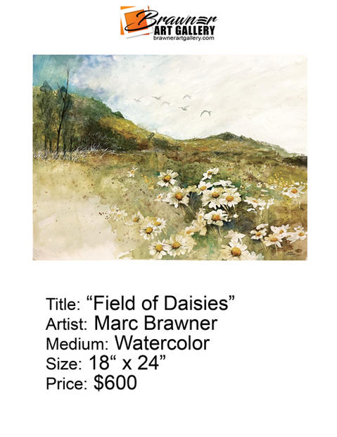 Field-of-Daisies-email.jpg