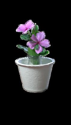 Big Pot (White)