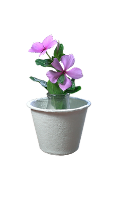 Small pot (Brown)