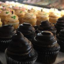 Jumbo Gourment Cupcakes