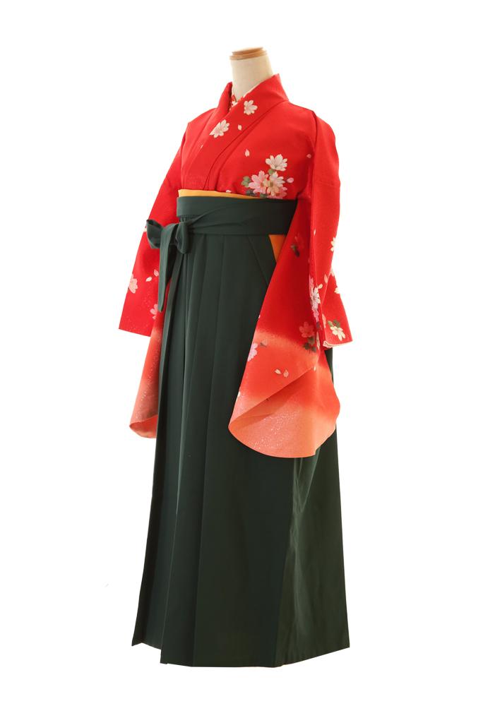 朱赤×濃緑