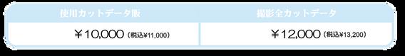 %E3%83%87%E3%83%BC%E3%82%BF_edited.png