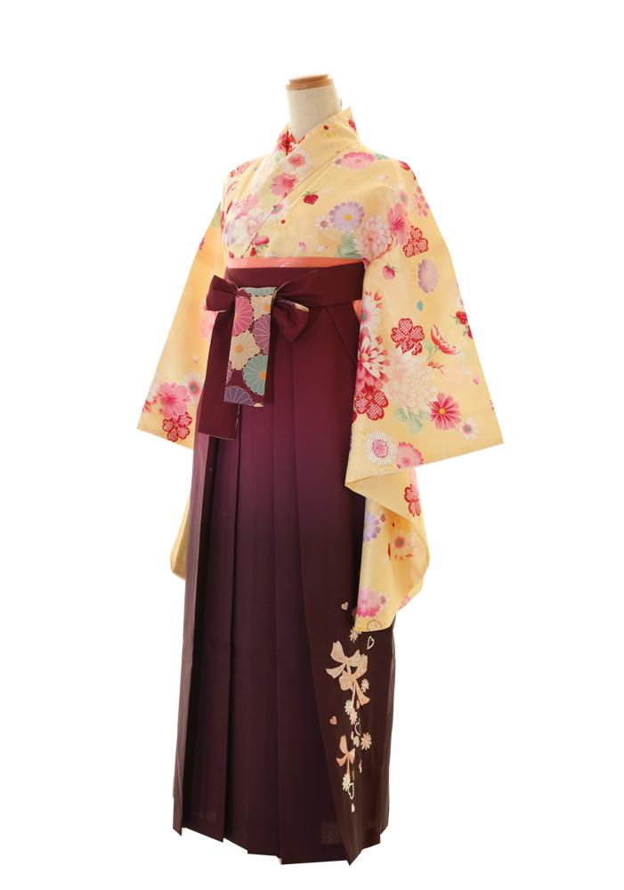 黄色×赤紫