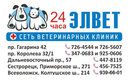Elvet_novyi_774_nomer.jpg