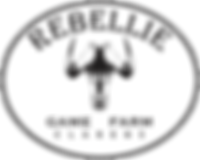 Rebellie Logo 1.png