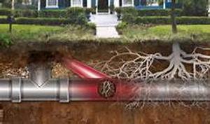 tuyauterie canalisation endomagée par les racines